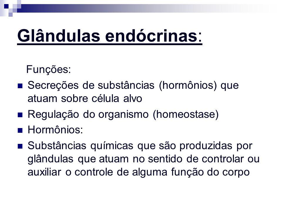 Glândulas endócrinas: