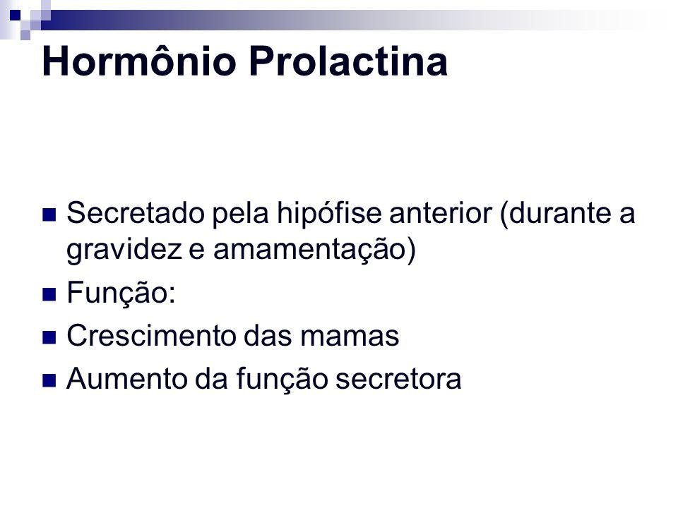 Hormônio Prolactina Secretado pela hipófise anterior (durante a gravidez e amamentação) Função: