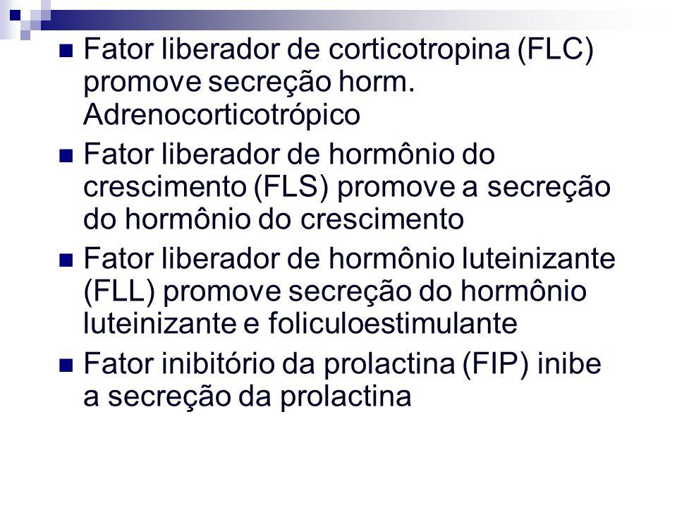 Fator liberador de corticotropina (FLC) promove secreção horm
