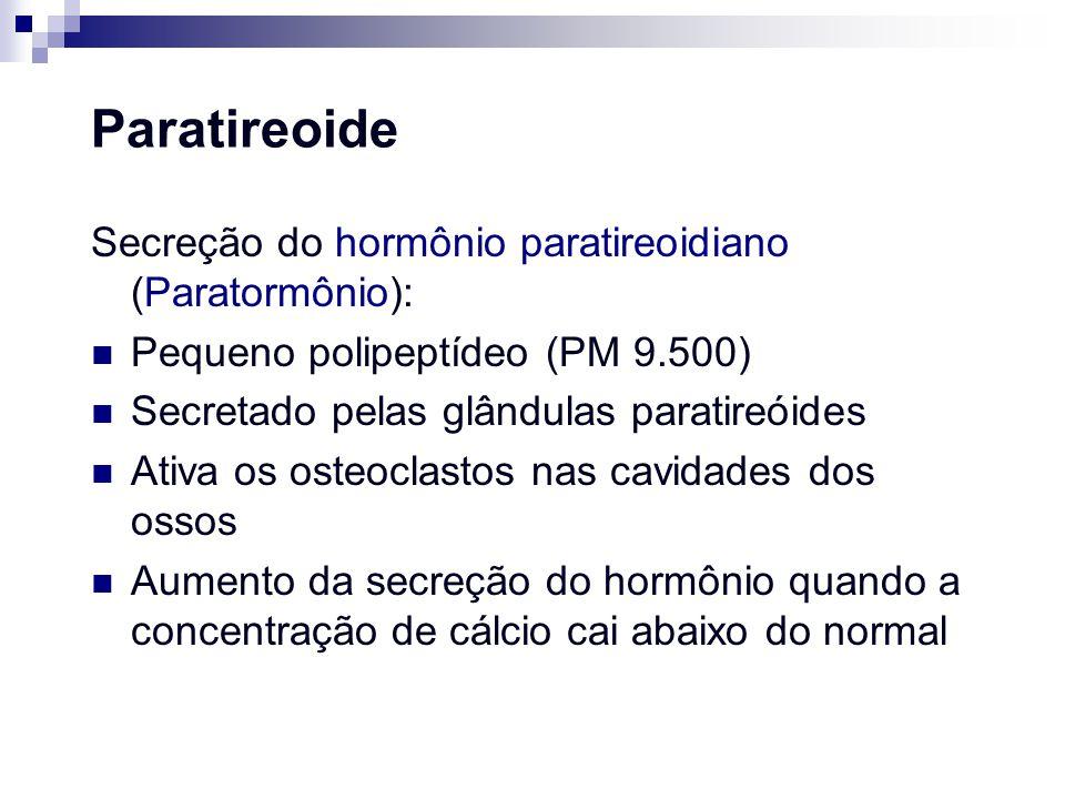 Paratireoide Secreção do hormônio paratireoidiano (Paratormônio):