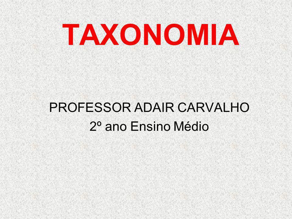 PROFESSOR ADAIR CARVALHO 2º ano Ensino Médio