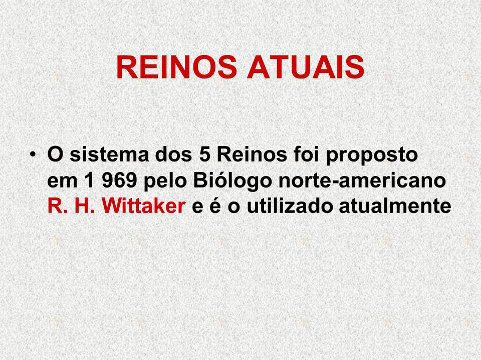 REINOS ATUAIS O sistema dos 5 Reinos foi proposto em 1 969 pelo Biólogo norte-americano R.