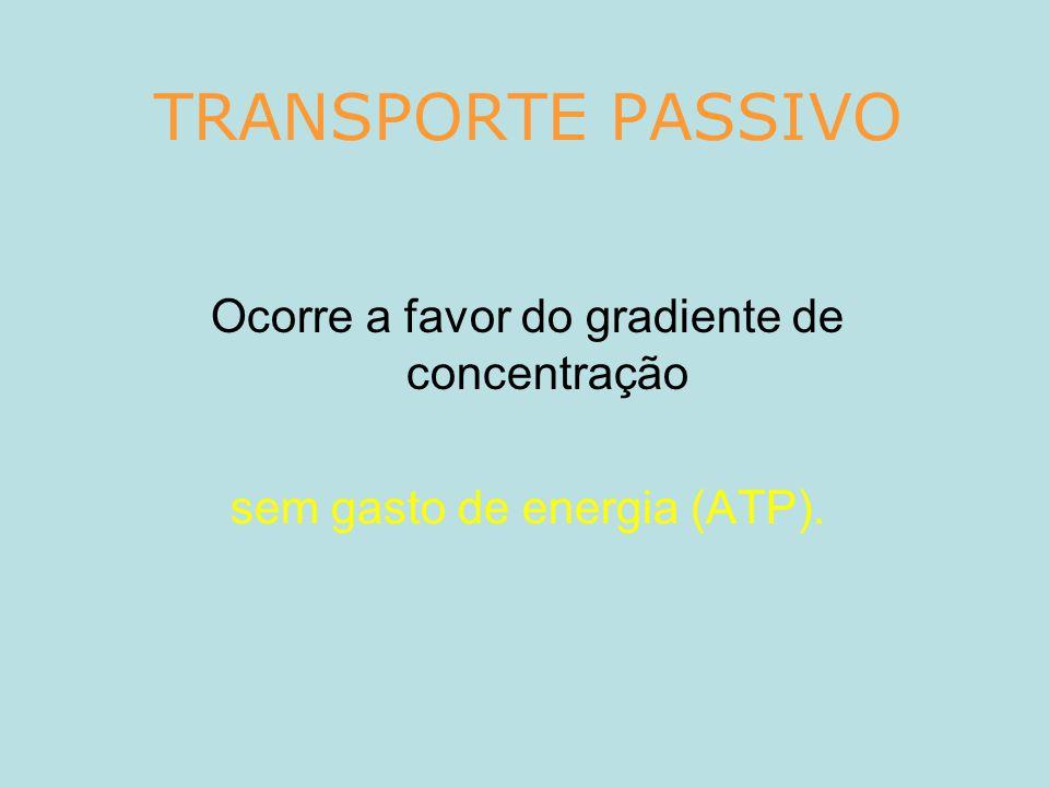 TRANSPORTE PASSIVO Ocorre a favor do gradiente de concentração