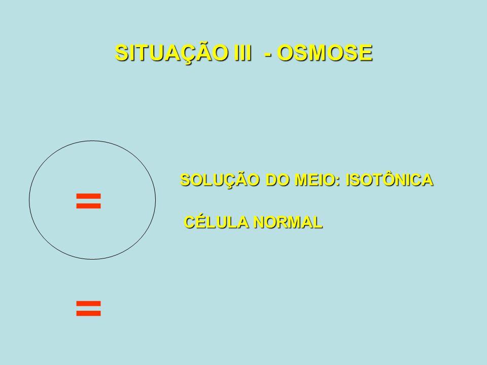 SITUAÇÃO III - OSMOSE SOLUÇÃO DO MEIO: ISOTÔNICA = CÉLULA NORMAL =