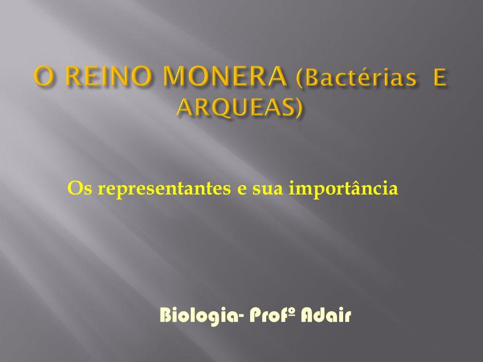 O REINO MONERA (Bactérias E ARQUEAS)
