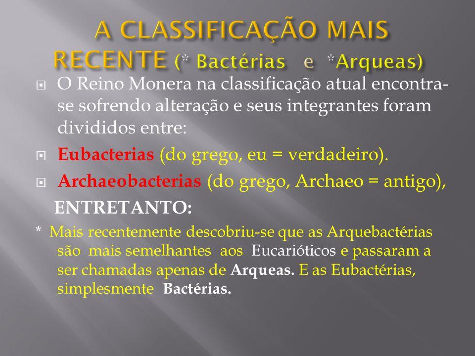 A CLASSIFICAÇÃO MAIS RECENTE (* Bactérias e *Arqueas)
