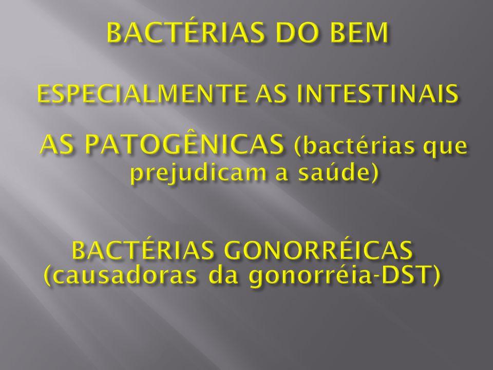 BACTÉRIAS DO BEM AS PATOGÊNICAS (bactérias que prejudicam a saúde)