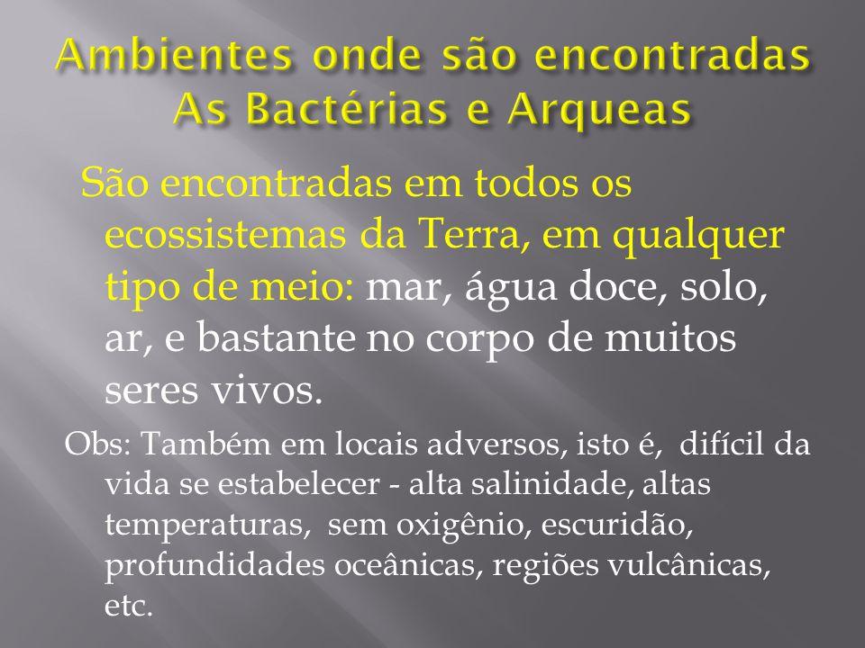 Ambientes onde são encontradas As Bactérias e Arqueas