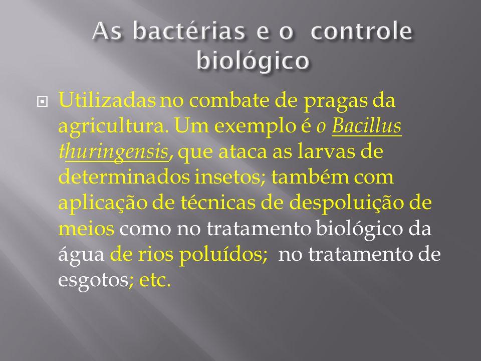 As bactérias e o controle biológico