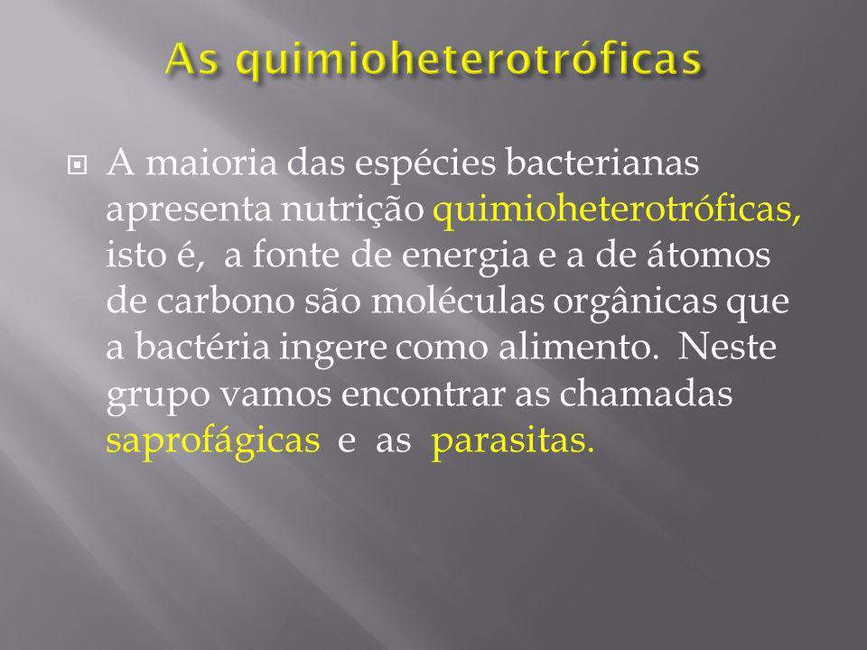 As quimioheterotróficas