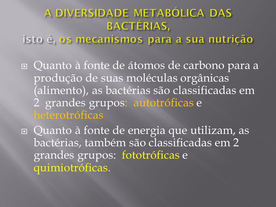 A DIVERSIDADE METABÓLICA DAS BACTÉRIAS, isto é, os mecanismos para a sua nutrição