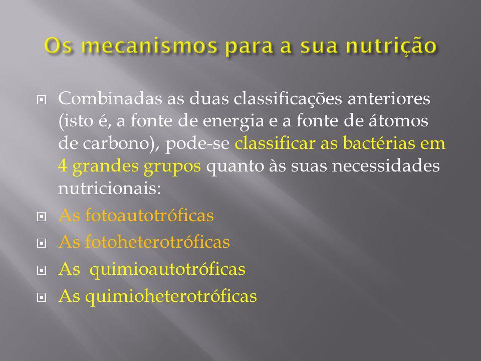 Os mecanismos para a sua nutrição