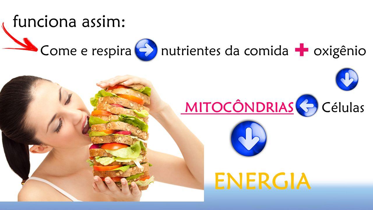 ENERGIA funciona assim: Come e respira nutrientes da comida oxigênio