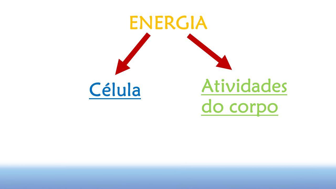 ENERGIA Atividades do corpo Célula