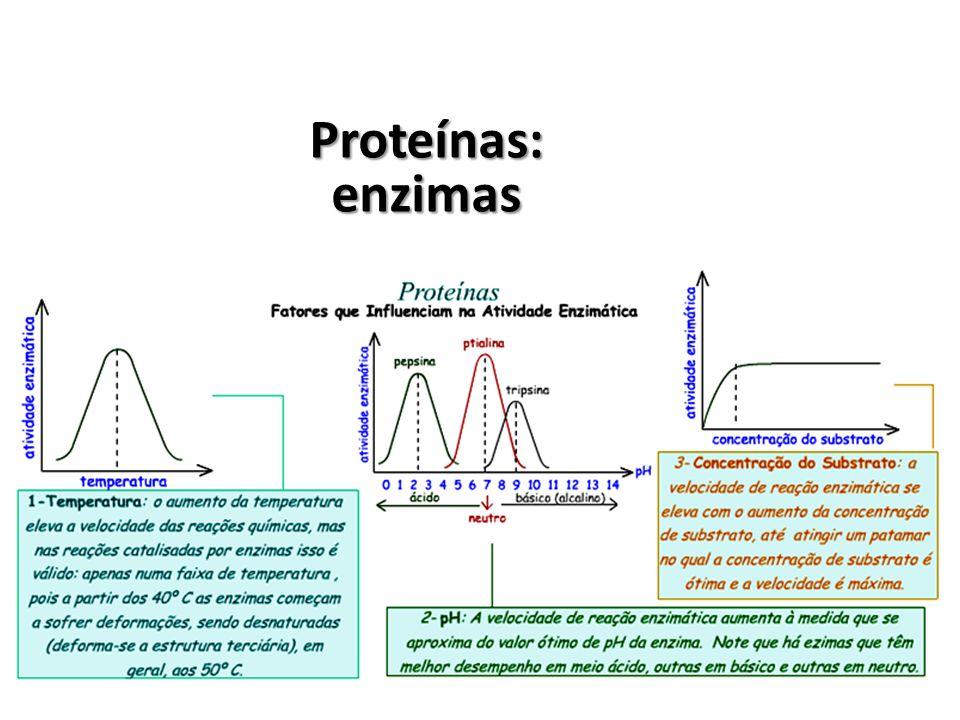 Proteínas: enzimas