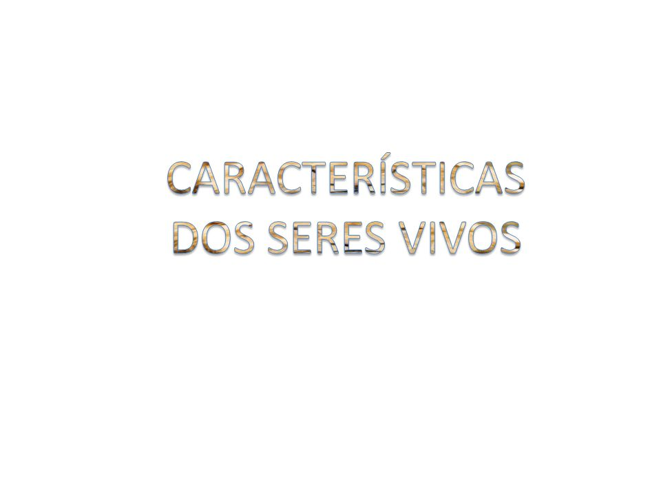 CARACTERÍSTICAS DOS SERES VIVOS