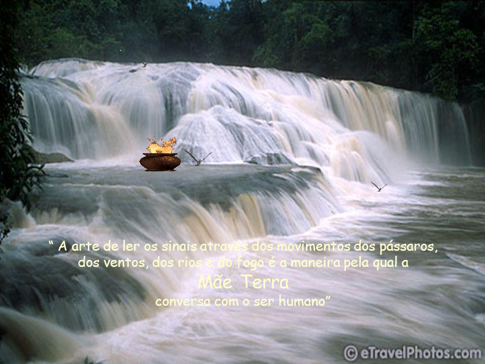 A arte de ler os sinais através dos movimentos dos pássaros, dos ventos, dos rios e do fogo é a maneira pela qual a Mãe Terra conversa com o ser humano