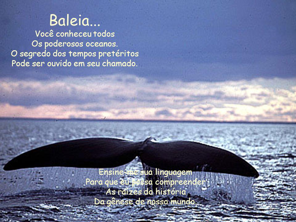 Baleia... Você conheceu todos. Os poderosos oceanos. O segredo dos tempos pretéritos. Pode ser ouvido em seu chamado.