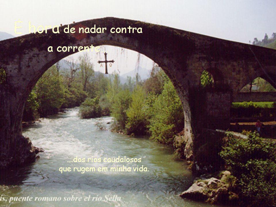 ...dos rios caudalosos que rugem em minha vida.