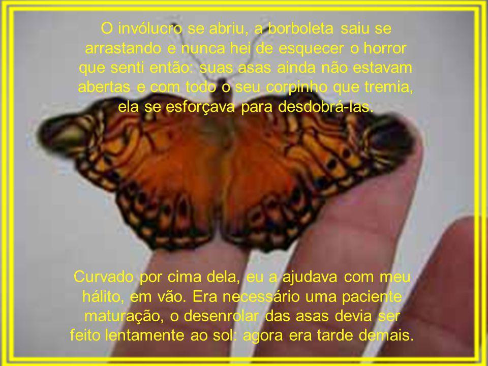 O invólucro se abriu, a borboleta saiu se arrastando e nunca hei de esquecer o horror que senti então: suas asas ainda não estavam abertas e com todo o seu corpinho que tremia, ela se esforçava para desdobrá-las.