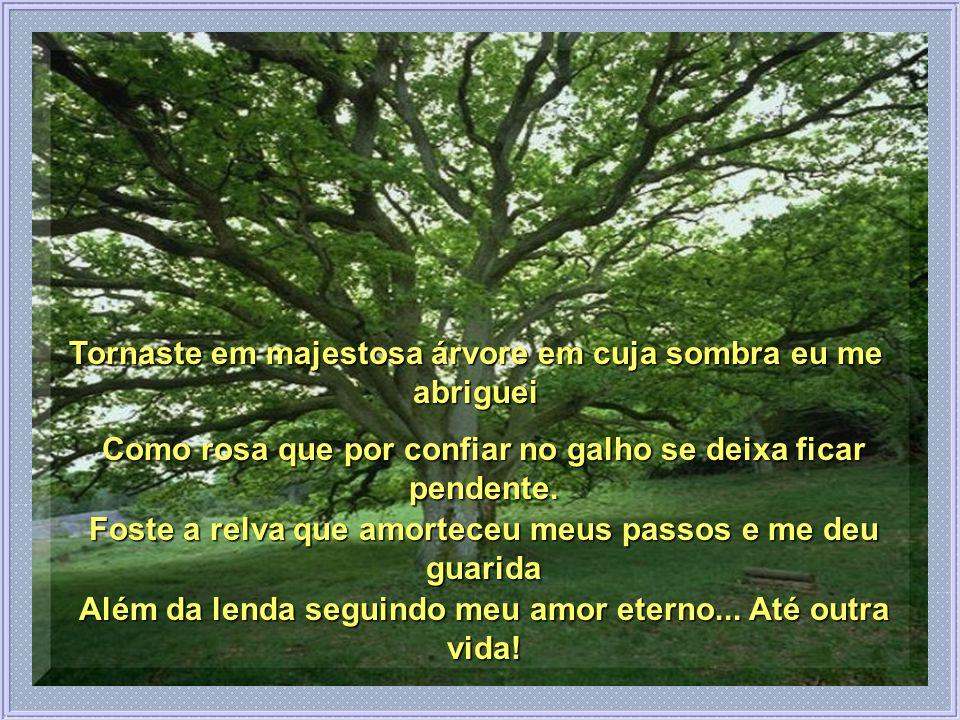 Tornaste em majestosa árvore em cuja sombra eu me abriguei