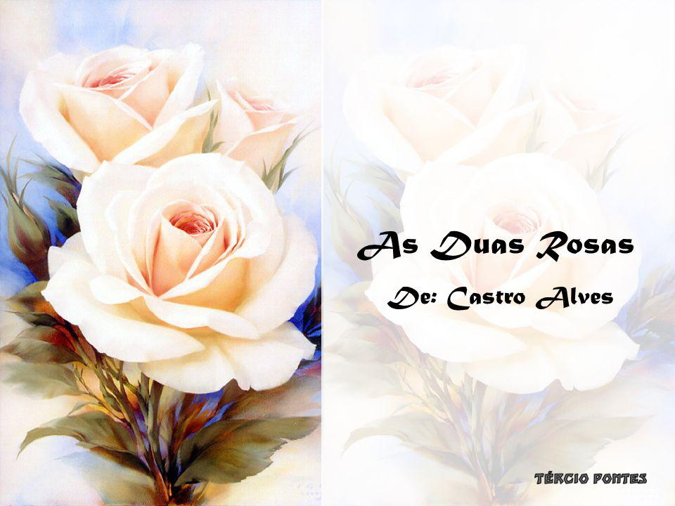 As Duas Rosas De: Castro Alves