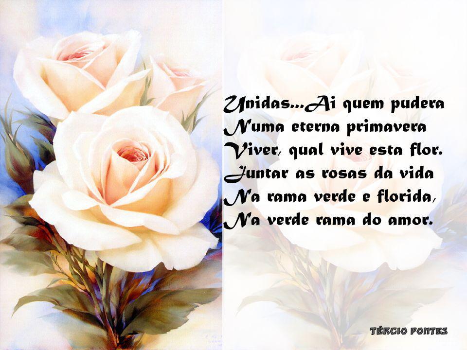 Unidas...Ai quem pudera Numa eterna primavera. Viver, qual vive esta flor. Juntar as rosas da vida.