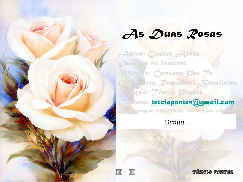 As Duas Rosas Autor: Castro Alves Imagem da internet