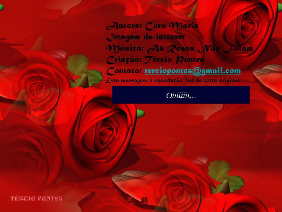 Música: As Rosas Não Falam Criação: Tércio Pontes