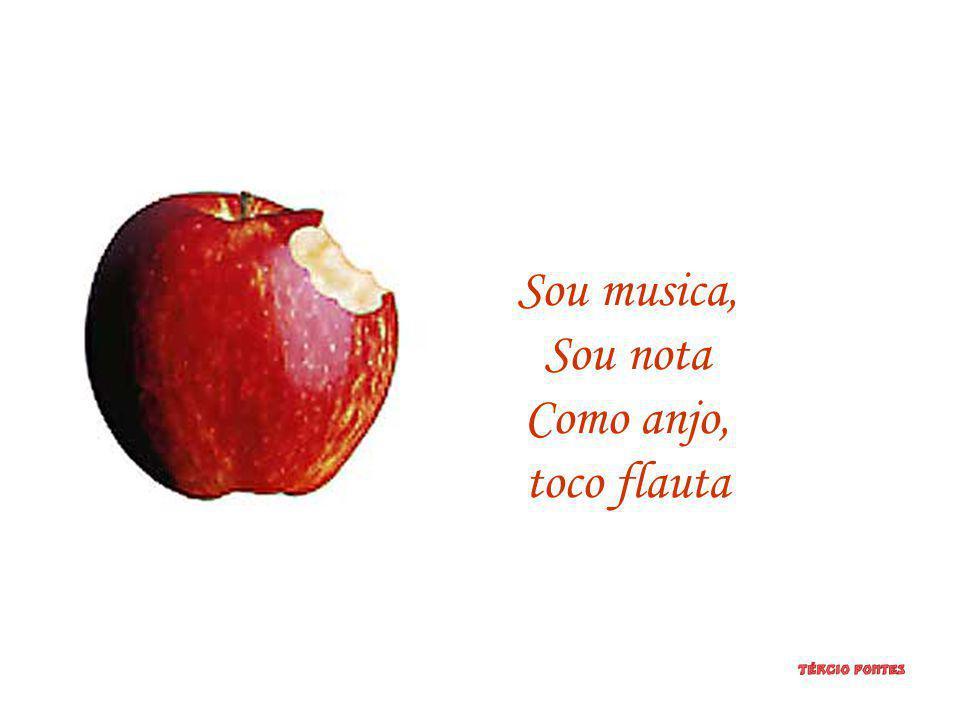 Sou musica, Sou nota Como anjo, toco flauta