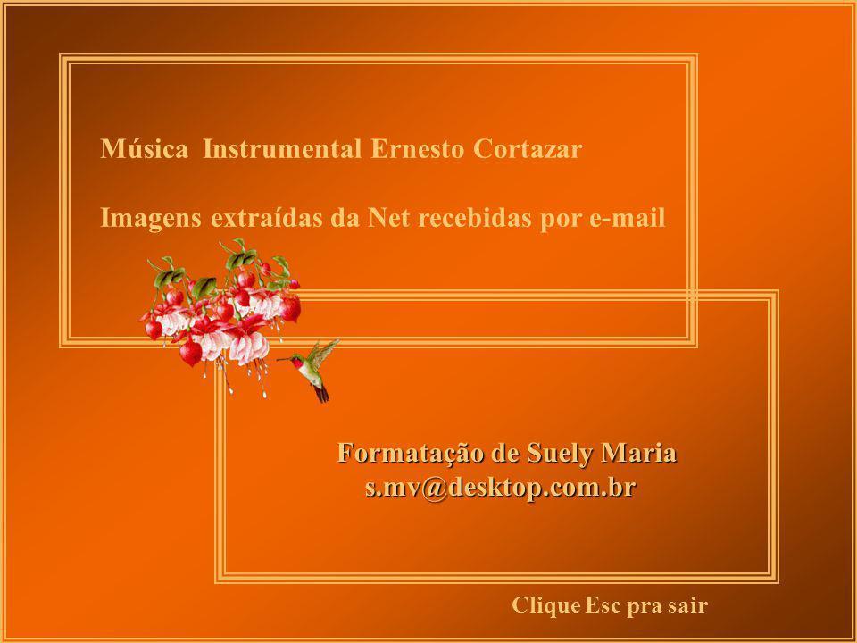 Música Instrumental Ernesto Cortazar