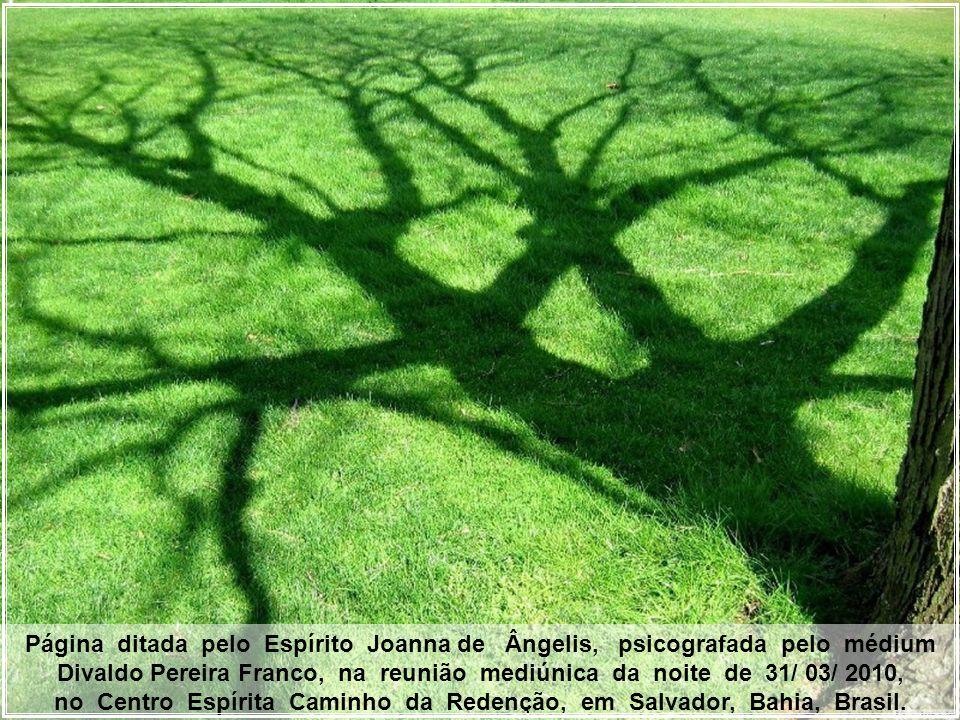 no Centro Espírita Caminho da Redenção, em Salvador, Bahia, Brasil.