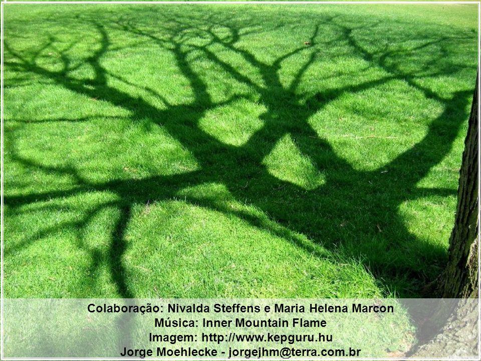 Colaboração: Nivalda Steffens e Maria Helena Marcon