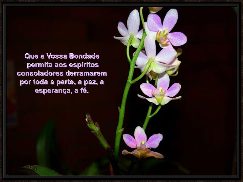 Que a Vossa Bondade permita aos espíritos consoladores derramarem por toda a parte, a paz, a.