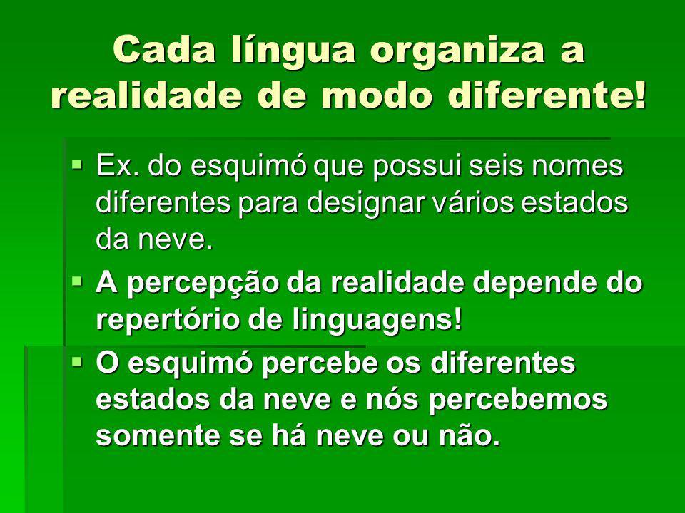 Cada língua organiza a realidade de modo diferente!