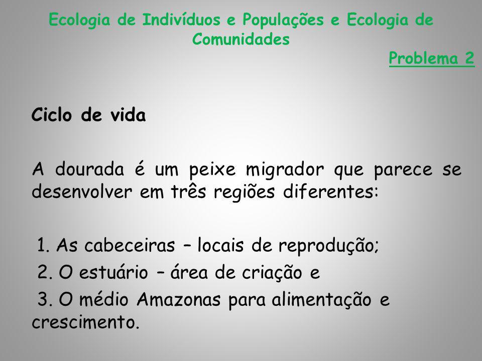 1. As cabeceiras – locais de reprodução;