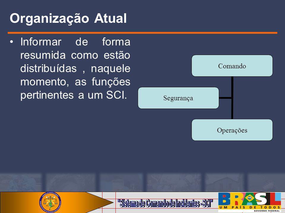 Organização Atual Informar de forma resumida como estão distribuídas , naquele momento, as funções pertinentes a um SCI.