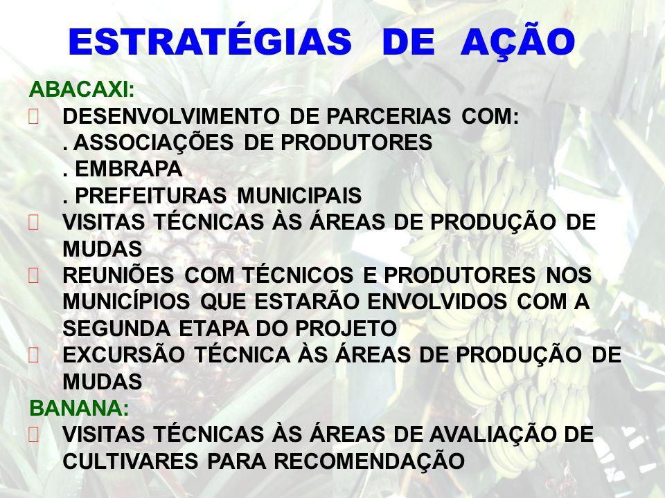 ESTRATÉGIAS DE AÇÃO ABACAXI: DESENVOLVIMENTO DE PARCERIAS COM: