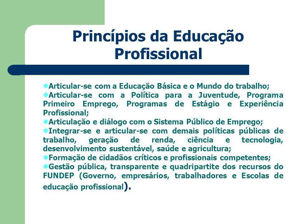 Princípios da Educação Profissional
