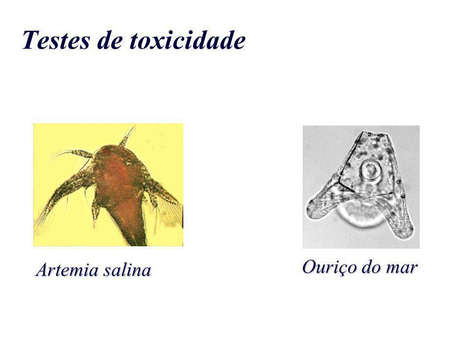 Testes de toxicidade Ouriço do mar Artemia salina