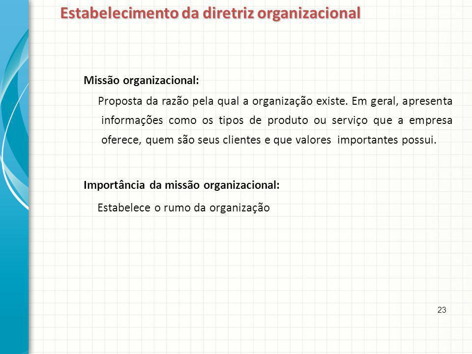 Estabelecimento da diretriz organizacional