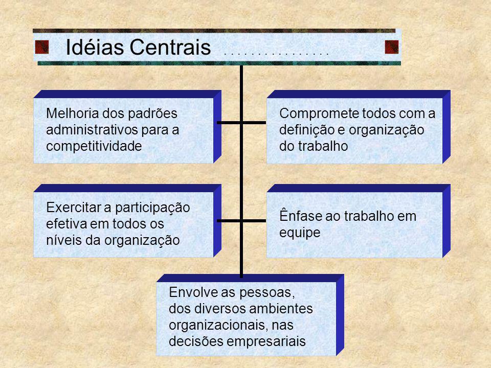 Idéias Centrais . . . . . . . . . . . . . . . . Melhoria dos padrões administrativos para a competitividade.