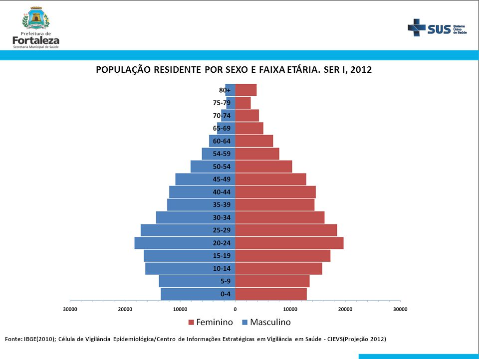 POPULAÇÃO RESIDENTE POR SEXO E FAIXA ETÁRIA. SER I, 2012