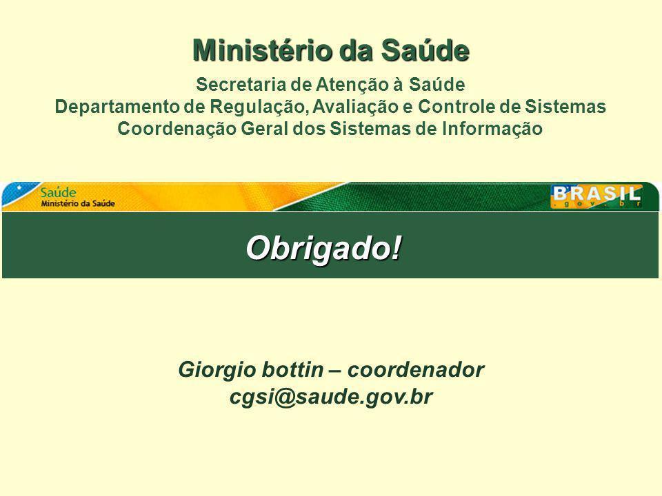 Obrigado! Ministério da Saúde Giorgio bottin – coordenador