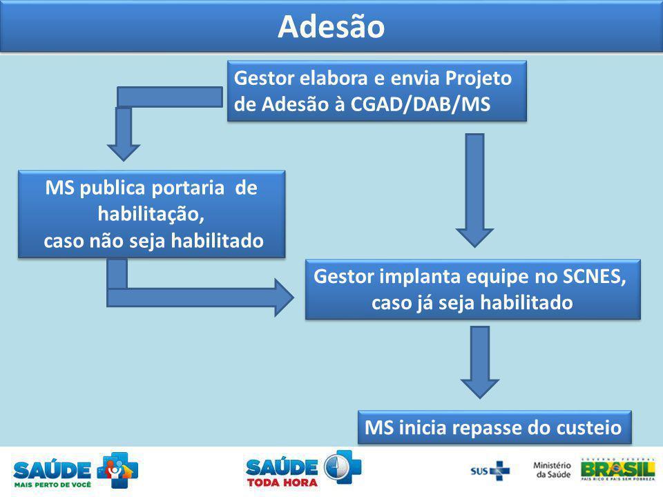 Adesão Gestor elabora e envia Projeto de Adesão à CGAD/DAB/MS