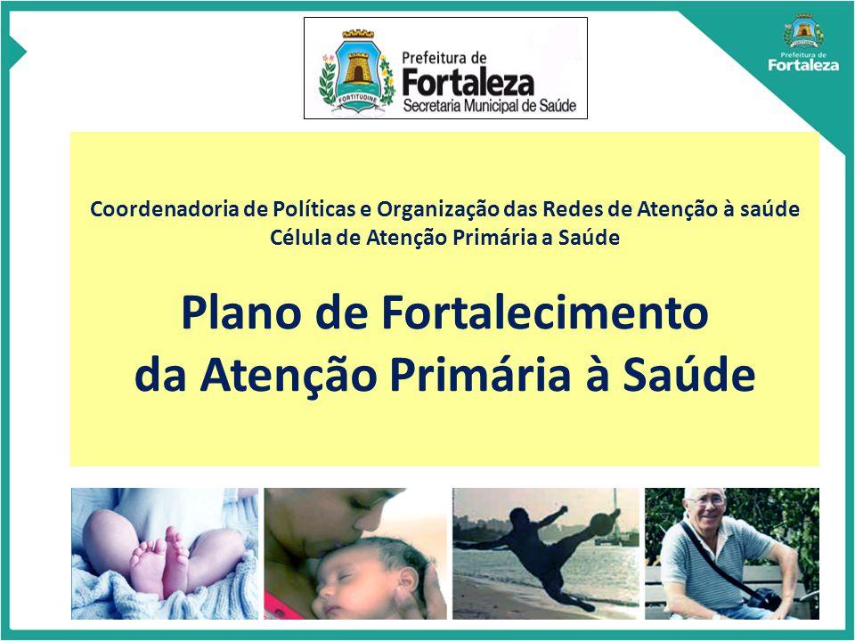 Coordenadoria de Políticas e Organização das Redes de Atenção à saúde Célula de Atenção Primária a Saúde Plano de Fortalecimento da Atenção Primária à Saúde