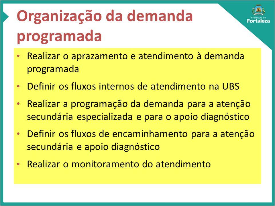 Organização da demanda programada