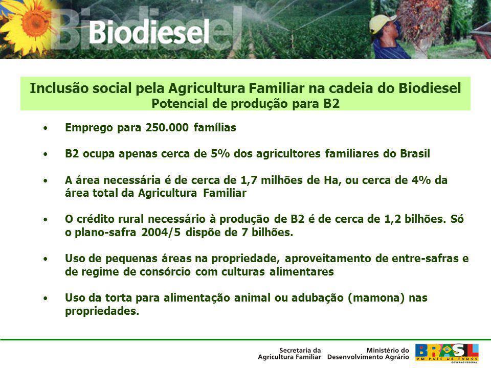 Inclusão social pela Agricultura Familiar na cadeia do Biodiesel Potencial de produção para B2