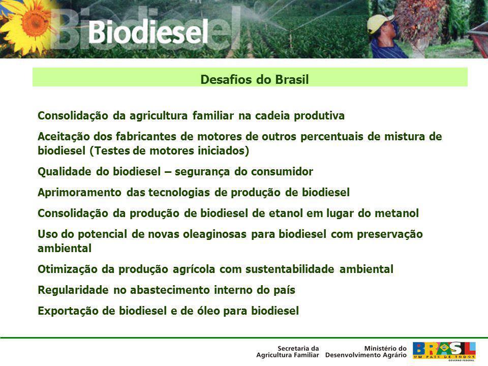 Desafios do Brasil Consolidação da agricultura familiar na cadeia produtiva.