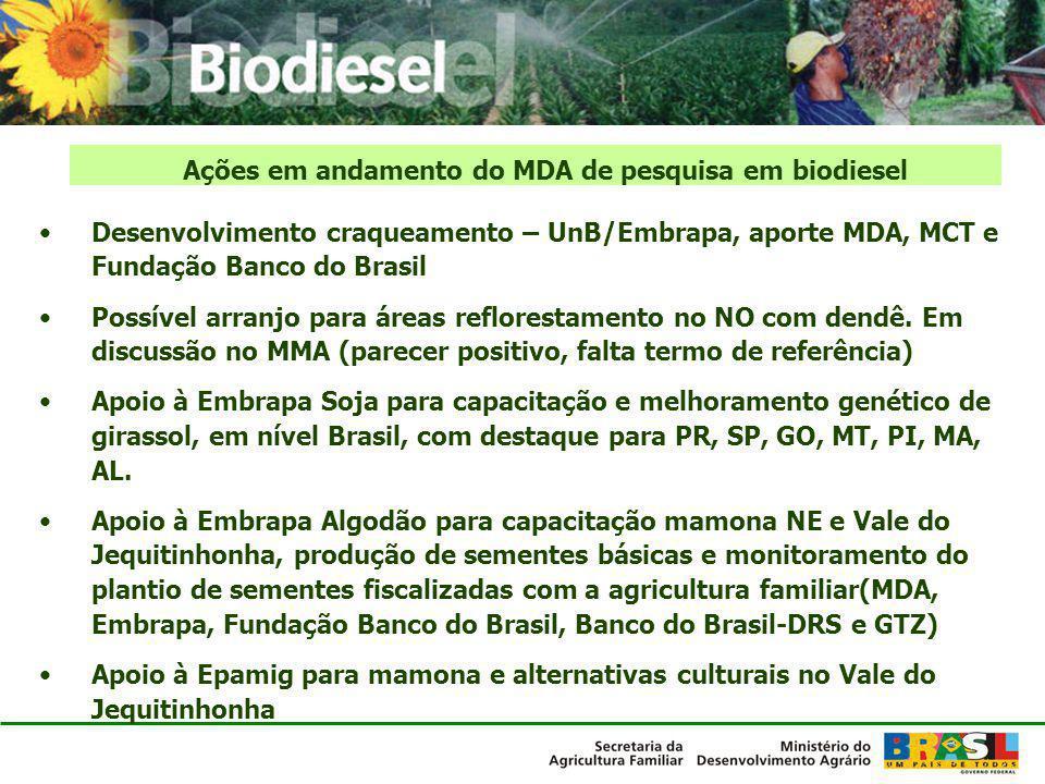 Ações em andamento do MDA de pesquisa em biodiesel